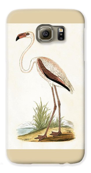 Rosy Flamingo Galaxy S6 Case by English School