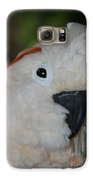 Salmon Crested Cockatoo Galaxy S6 Case by Sharon Mau
