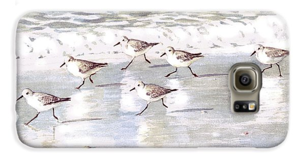 Sandpipers On Siesta Key Galaxy S6 Case by Shawn McLoughlin