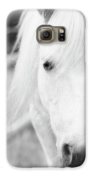 Shetland Pony Galaxy S6 Case by Tina Lee