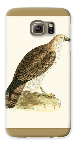 Short Toed Eagle Galaxy S6 Case by English School