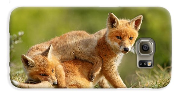 Sibbling Love - Playing Fox Cubs Galaxy S6 Case by Roeselien Raimond