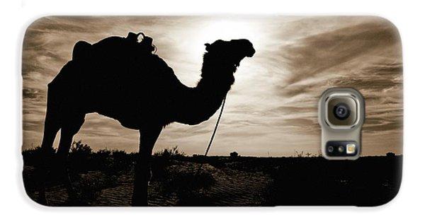 Silhouetted Camel, Sahara Desert, Douz Galaxy S6 Case by David DuChemin