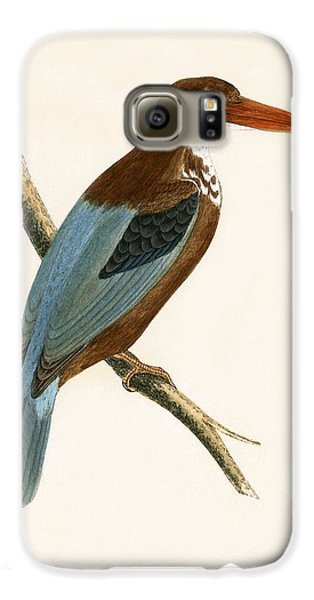 Smyrna Kingfisher Galaxy S6 Case by English School