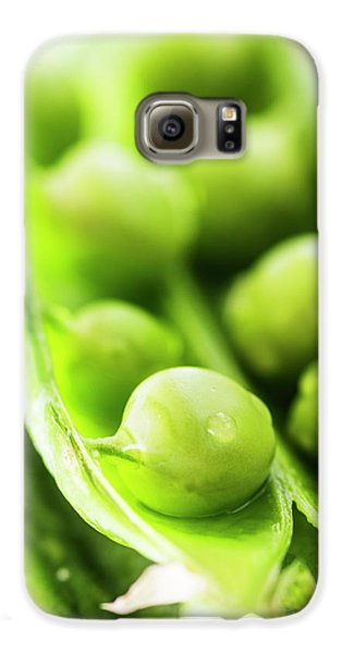 Snow Peas Or Green Peas Seeds Galaxy S6 Case by Vishwanath Bhat