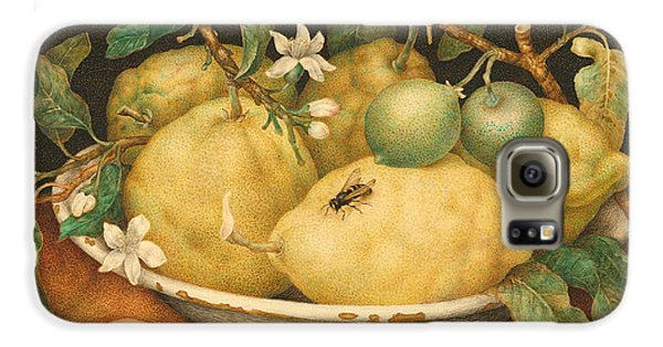 Still Life With A Bowl Of Citrons Galaxy S6 Case by Giovanna Garzoni