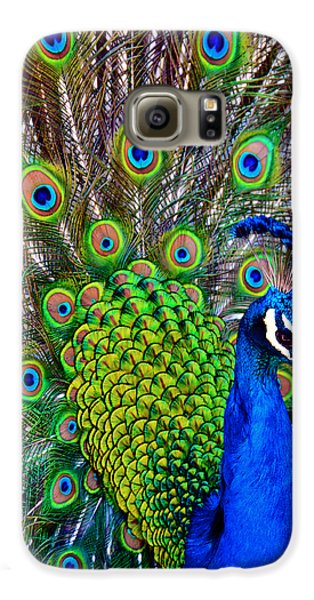 Strut Samsung Galaxy Case by Angelina Vick