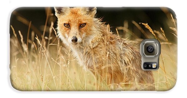 The Catcher In The Grass - Wild Red Fox Galaxy S6 Case by Roeselien Raimond