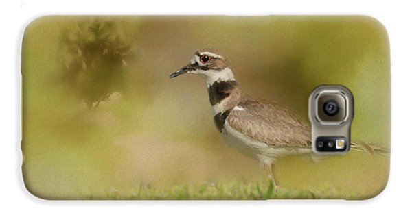 The Elusive Killdeer Galaxy S6 Case by Jai Johnson