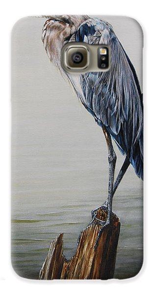 The Sentinel - Portrait Of A Great Blue Heron Galaxy S6 Case by Rob Dreyer AFC
