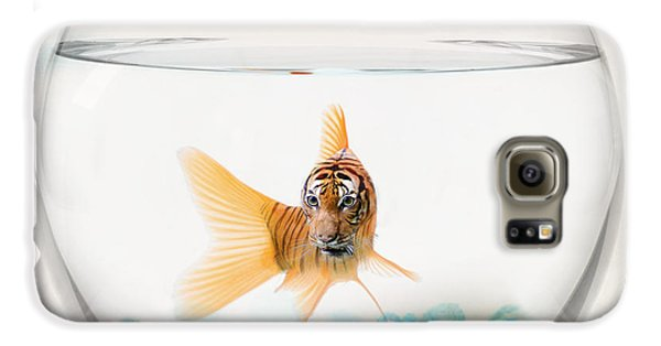 Tiger Fish Galaxy S6 Case by Juli Scalzi