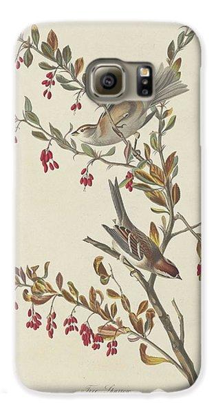 Tree Sparrow Galaxy S6 Case by John James Audubon