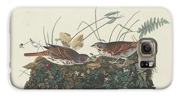 Two-colored Sparrow Galaxy S6 Case by John James Audubon