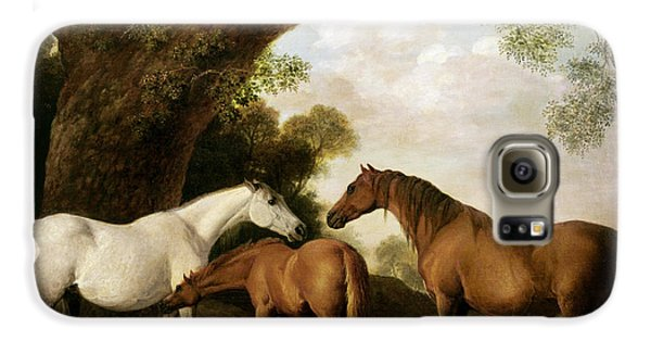 Two Mares And A Foal Galaxy S6 Case by George Stubbs