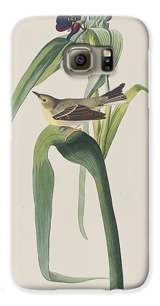 Vigor's Warbler Galaxy S6 Case by John James Audubon