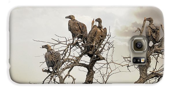 Vultures In A Dead Tree.  Galaxy S6 Case by Jane Rix