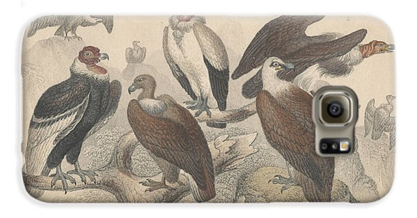 Vultures Galaxy S6 Case by Oliver Goldsmith