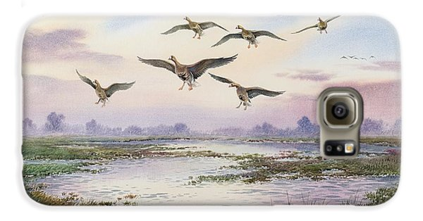 White-fronted Geese Alighting Galaxy S6 Case by Carl Donner