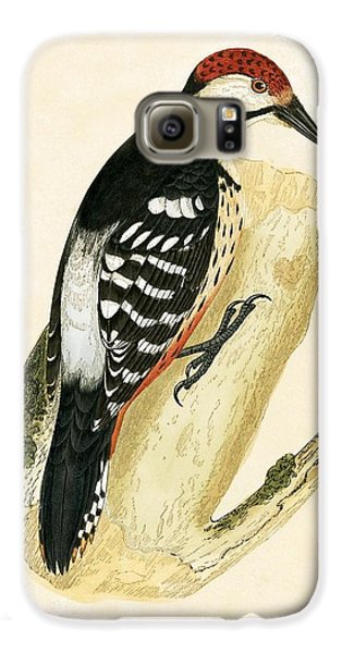 White Rumped Woodpecker Galaxy S6 Case by English School