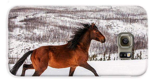 Wild Horse Galaxy S6 Case by Todd Klassy