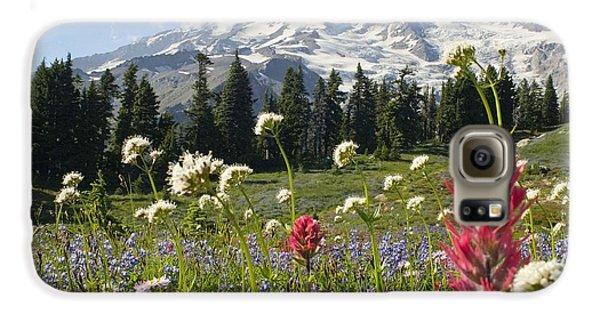 Wildflowers In Mount Rainier National Galaxy S6 Case by Dan Sherwood