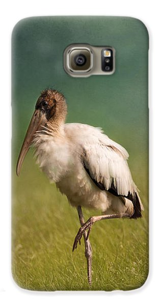 Wood Stork - Balancing Galaxy S6 Case by Kim Hojnacki