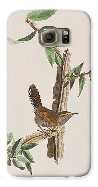 Wren Galaxy S6 Case by John James Audubon