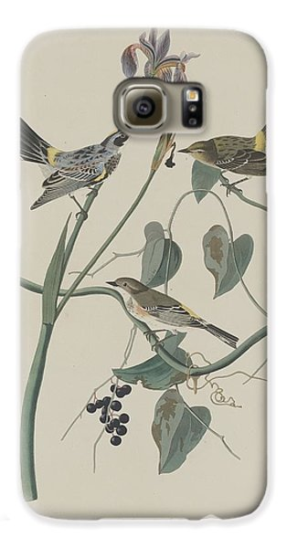 Yellow-crown Warbler Galaxy S6 Case by John James Audubon