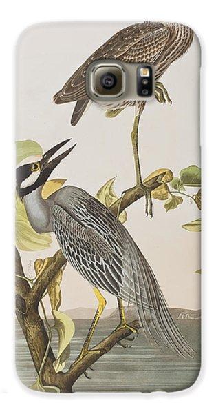 Yellow Crowned Heron Galaxy S6 Case by John James Audubon