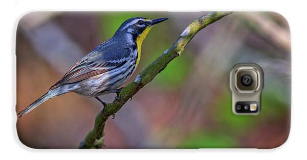 Yellow-throated Warbler Galaxy S6 Case by Rick Berk