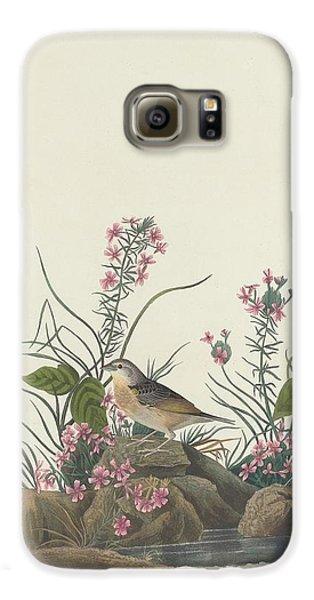 Yellow-winged Sparrow Galaxy S6 Case by John James Audubon