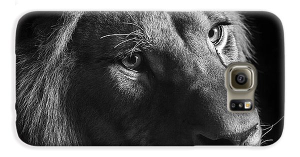 Young Lion In Black And White Galaxy S6 Case by Lukas Holas
