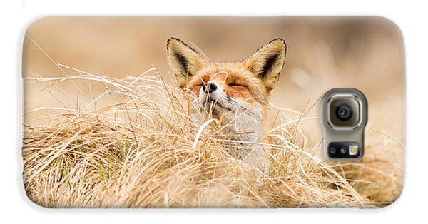 Zen Fox Series - Zen Fox 2.7 Galaxy S6 Case by Roeselien Raimond
