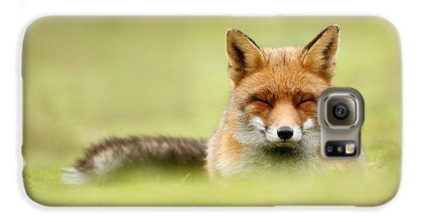 Zen Fox Series - Zen Fox In A Sea Of Green Galaxy S6 Case by Roeselien Raimond
