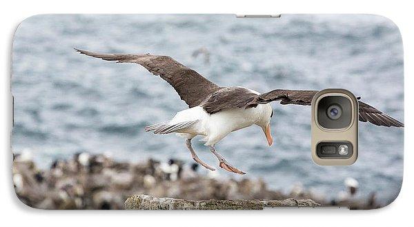 A Black Browed Albatross Galaxy Case by Ashley Cooper