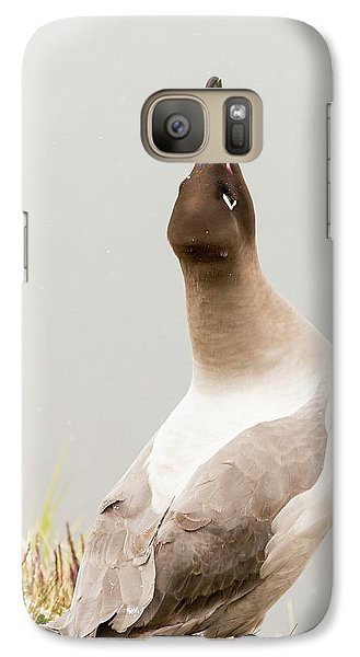 A Light Mantled Albatross Galaxy Case by Ashley Cooper