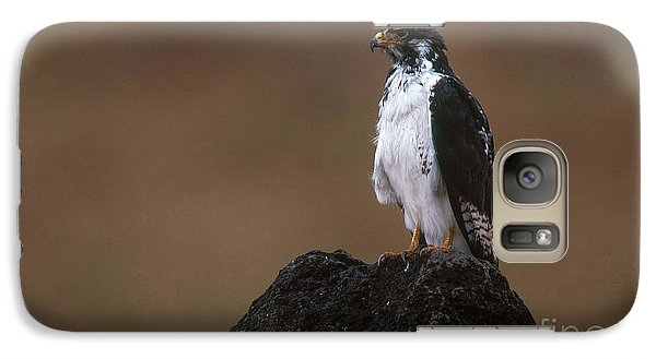 Augur Buzzard Galaxy S7 Case by Art Wolfe
