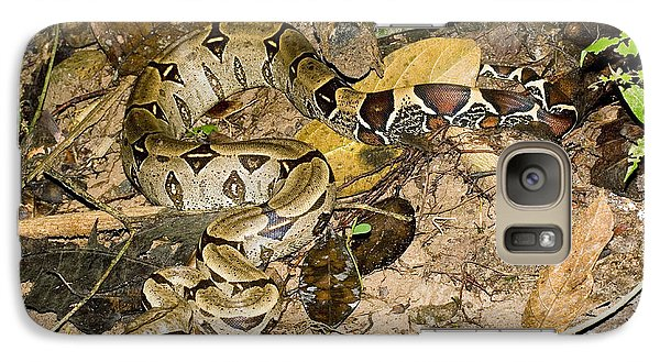 Boa Constrictor Galaxy Case by Gregory G. Dimijian, M.D.