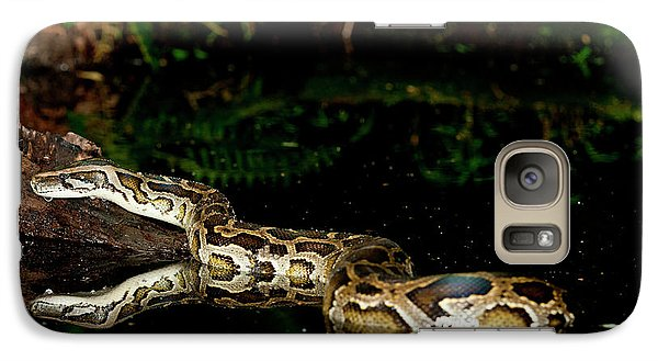 Burmese Python, Python Molurus Galaxy S7 Case by David Northcott