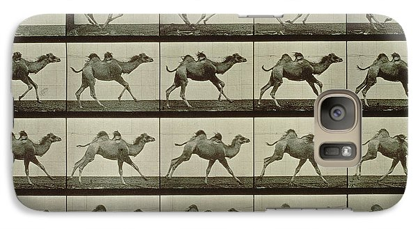 Camel Galaxy S7 Case by Eadweard Muybridge