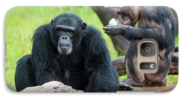 Chimpanzees Galaxy Case by Pan Xunbin