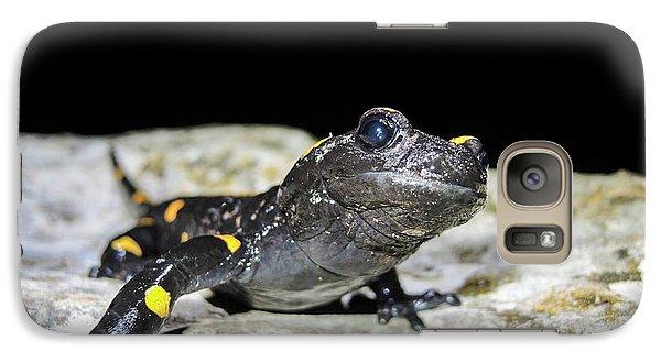 Fire Salamander (salamandra Salamandra) Galaxy Case by Photostock-israel