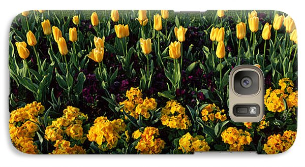 Flowers In Hyde Park, City Galaxy Case by Panoramic Images