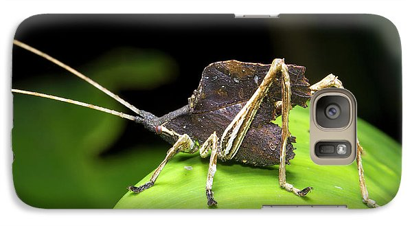 Leaf Mimic Bush-cricket Galaxy S7 Case by Dr Morley Read