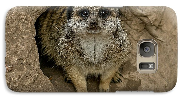 Meerkat Galaxy S7 Case by Ernie Echols