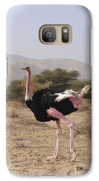 Ostrich In A Nature Reserve Galaxy Case by PhotoStock-Israel