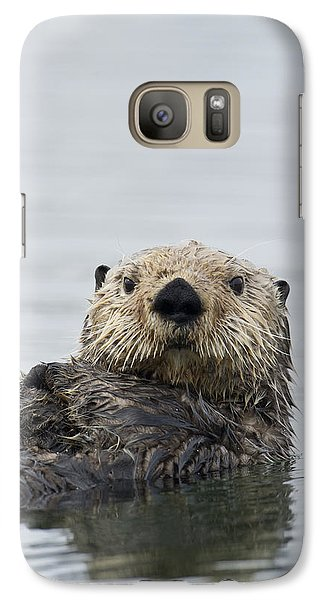 Sea Otter Alaska Galaxy Case by Michael Quinton