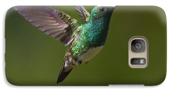 Snowy-bellied Hummingbird Galaxy S7 Case by Heiko Koehrer-Wagner