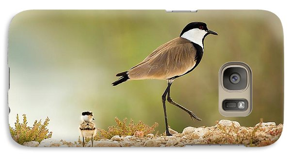 Spur-winged Lapwing Vanellus Spinosus Galaxy Case by Photostock-israel