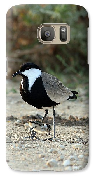 Spur-winged Plover And Chick Galaxy S7 Case by PhotoStock-Israel